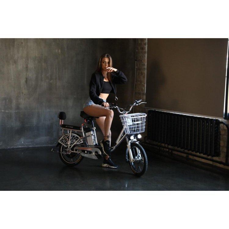 Электровелосипед Zaxboard DG-500 модель Zaxboard DG-500 от ZaxBoard